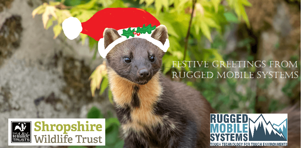 Festive Greetings from all the team at RUGGED MOBILE Systems
